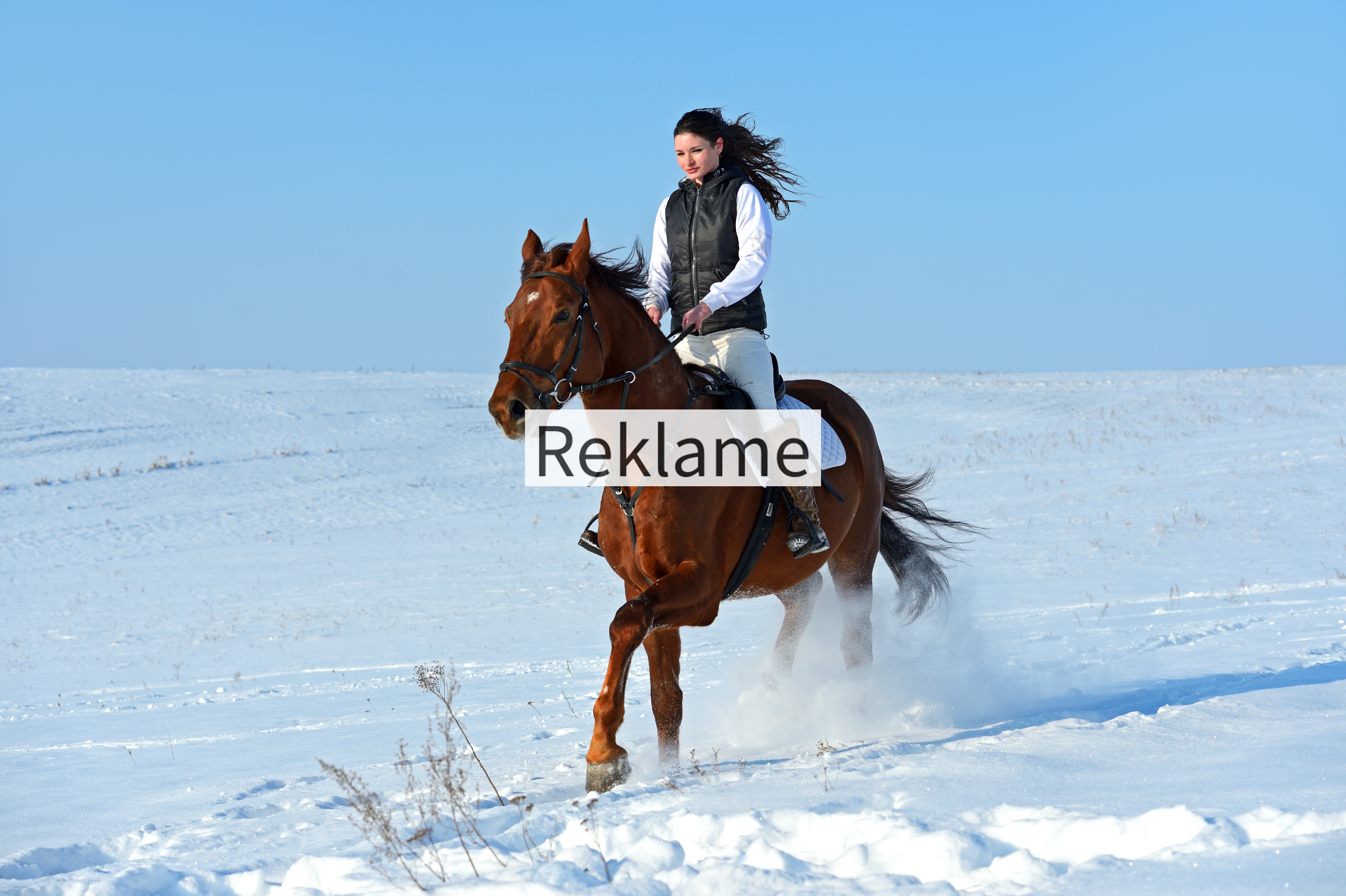 Hold din hest sund og rask i vinterkulden